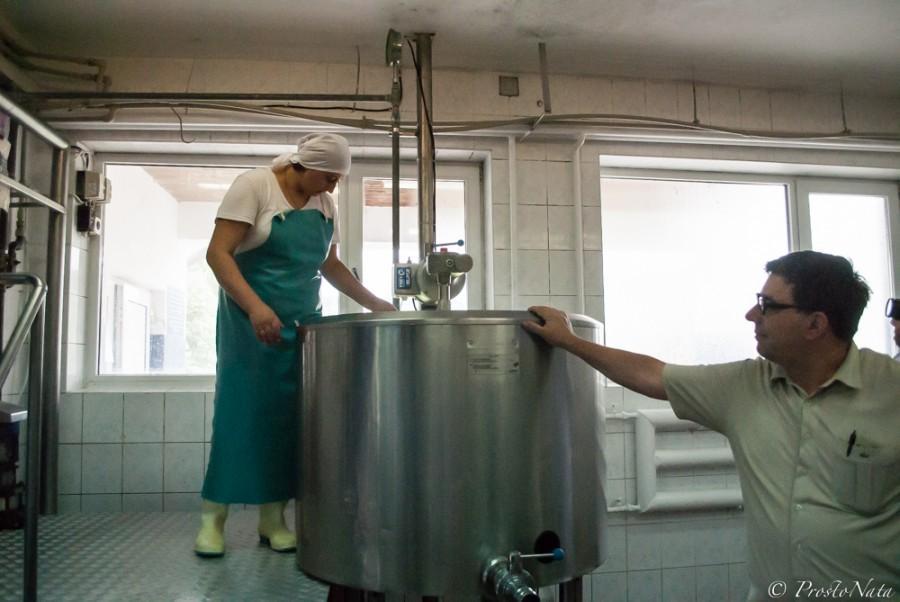 6. У фермеров сыроварня не берет молоко принципиально. На то есть сразу две причины. Во-первых, каче