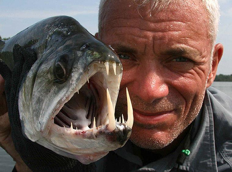 Рыбалка по-крупному.