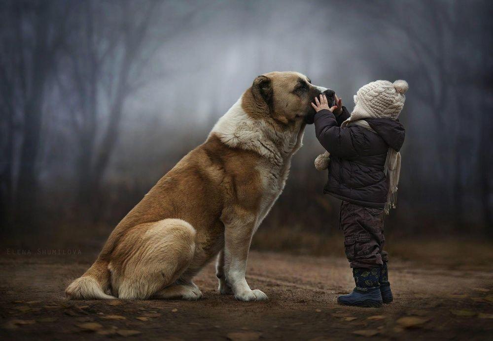 14. Настоящая забота — следить, чтобы твой друг не замерз! (© Elena Shumilova)