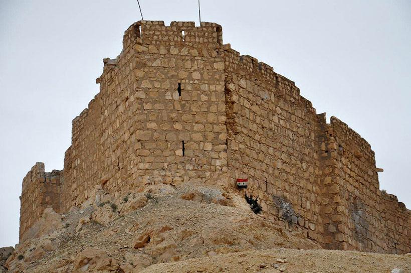 18. Броневики сирийских солдат в Пальмире, 27 марта 2016.