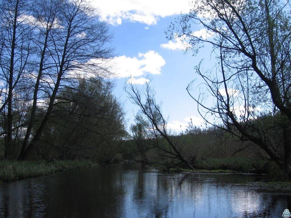 Река Боромля
