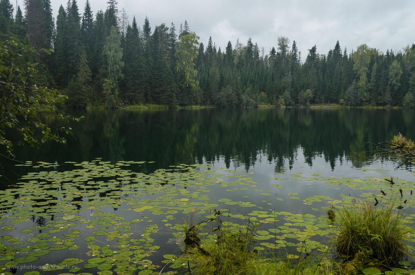 Фотография 6. Озеро Бездонное в Свердловской области имеет глубину 49 метров. Берега окружены глухой тайгой. Куда поехать из Екатеринбурга на машине. 1/40, 8.0, 24, 200.