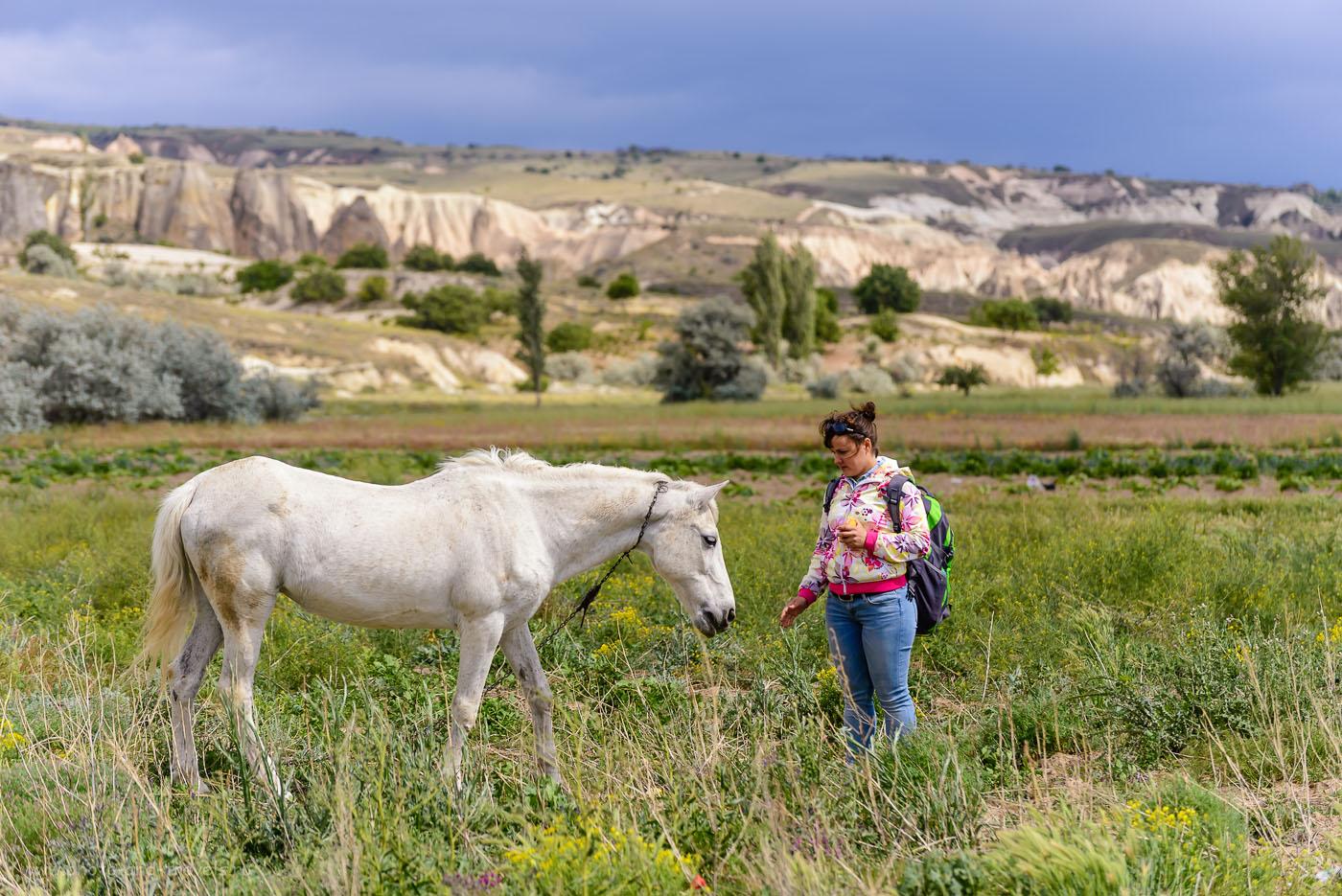 Фотография 32. Каппадокия. Страна прекрасных лошадей. 1/800, -0.33, 4.8, 100, 140.