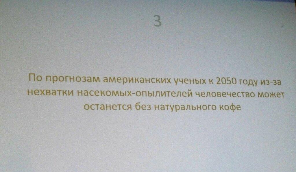 P1660531.JPG
