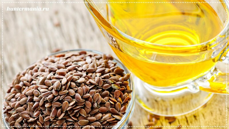 Семя и масло льна на нашем столе