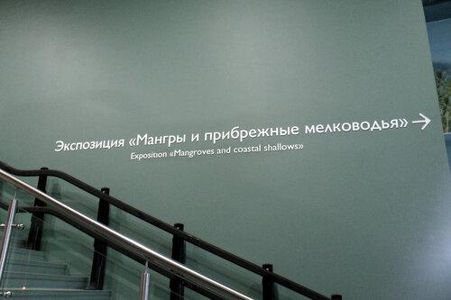 moskvarium-11.jpg