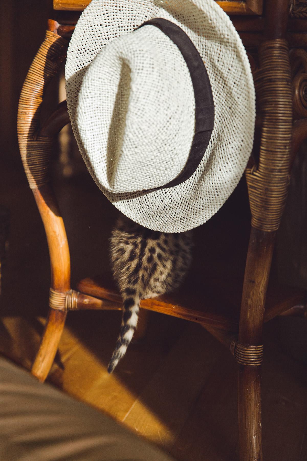 South Journey / фото Ксения Че