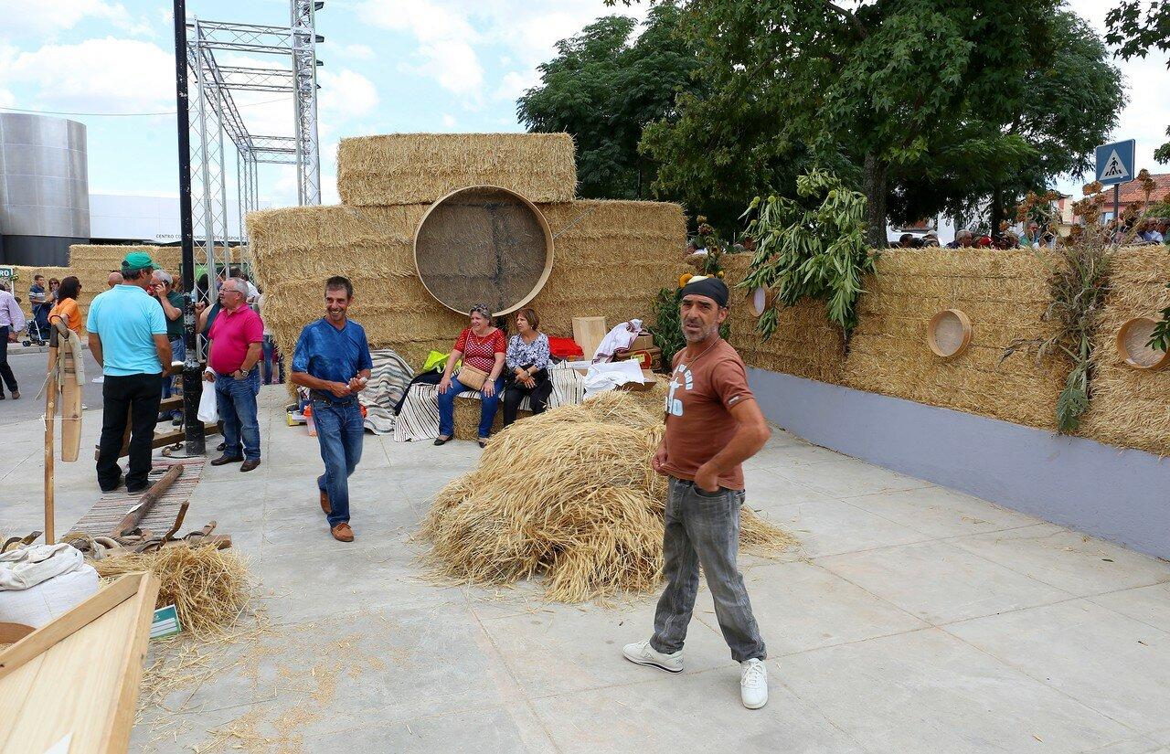 Feira Farta da Guarda 2015, agricultural fair