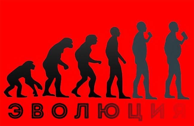 15сатирических иллюстраций, после которых появляются вопросы кэволюции