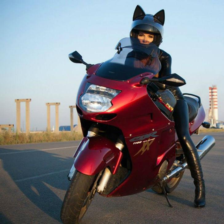 Шлем для настоящей женщины-кошки (8 фото)