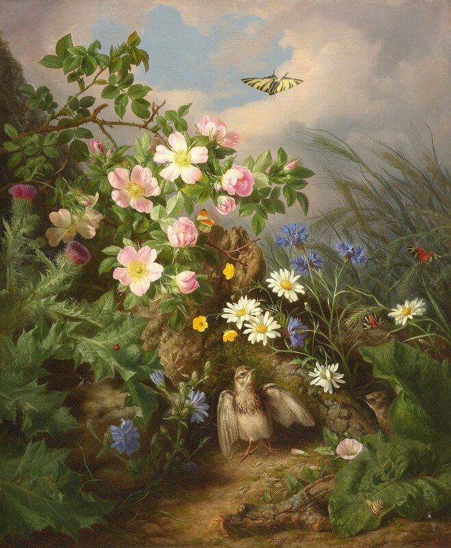 Натюрморт с птицами. Австрийский мастер натюрмортов ХIХ века - Йозеф Лауэр