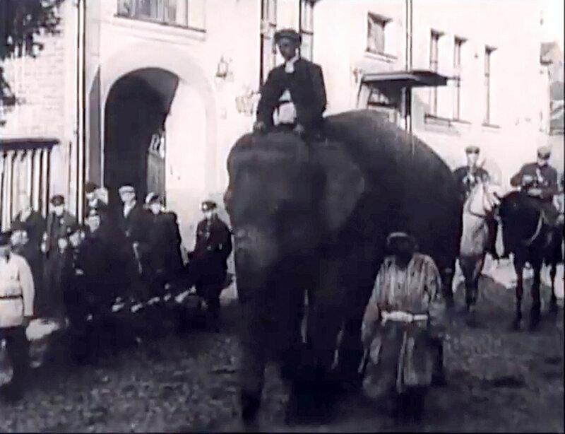 Слон2.jpg