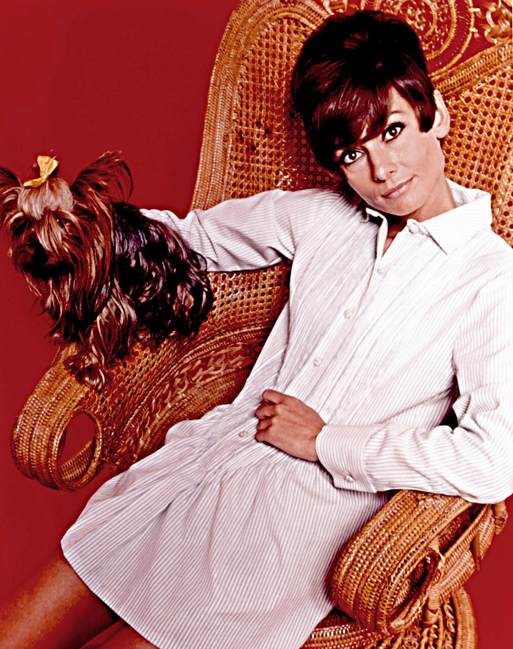 Audrey Hepburn, Two for the road (1967) starring Albert Finney