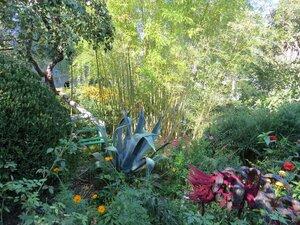 Сад в доме-музее Чехова в Ялте