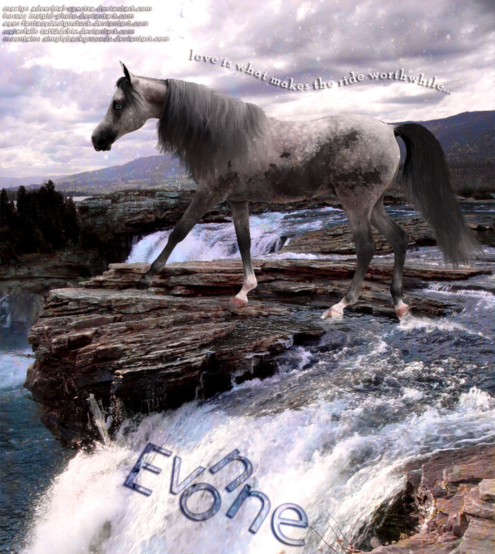 Шикарные лошади от Stephanie Dodge
