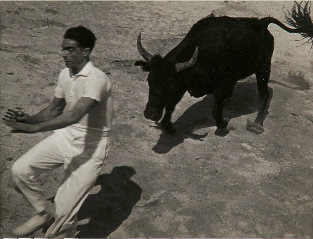 1936.  Гонки с быками в Провансе, Сент-Мари-де-ла-Мер. Часть 4