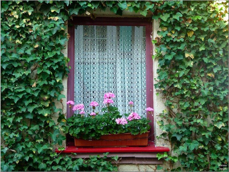 Окна Линца.