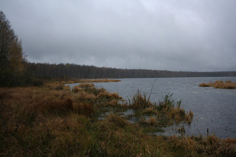 Сенцы рязанская область рыбалка