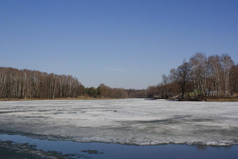 Панорама пруда. Ранняя весна