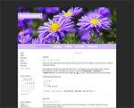 Дизайн для ЖЖ: Осенние цветы (S2). Дизайны для livejournal. Дизайны для Живого журнала. Оформление ЖЖ. Бесплатные стили. Авторские дизайны для ЖЖ