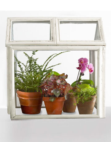 декорирование растениями интерьер хендмейд мастер-класс