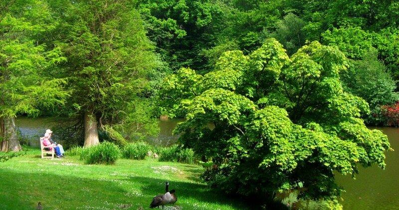 Парк Шеффилд  (Sheffield Park Garden)