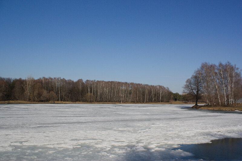 Тающий снег на пруду