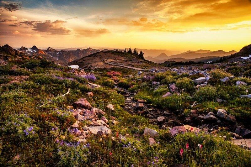Национальный парк Маунт-Рейнир, США