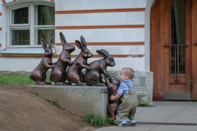 Малыш решил помочь зайчатам.