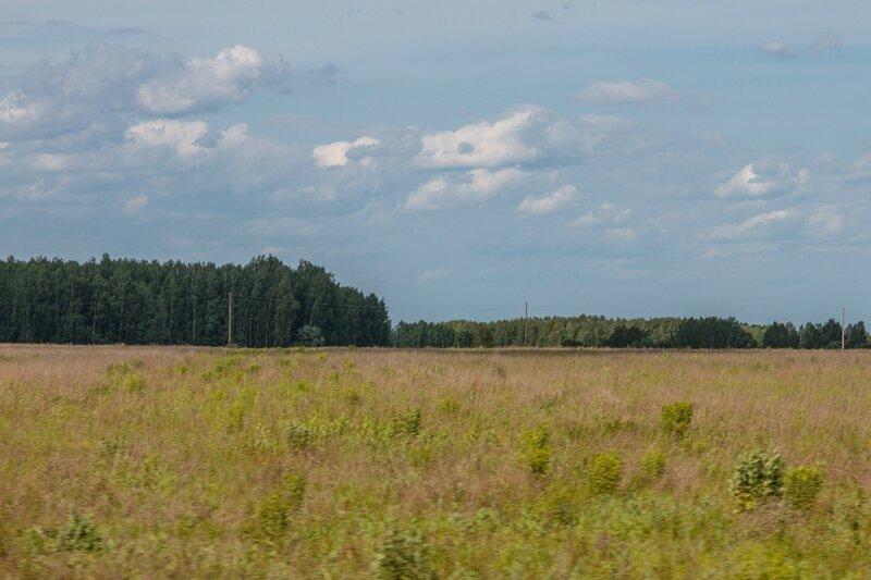 Поле и лес, Нижегородская область