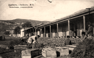 Тахта-базар, упаковка яблок