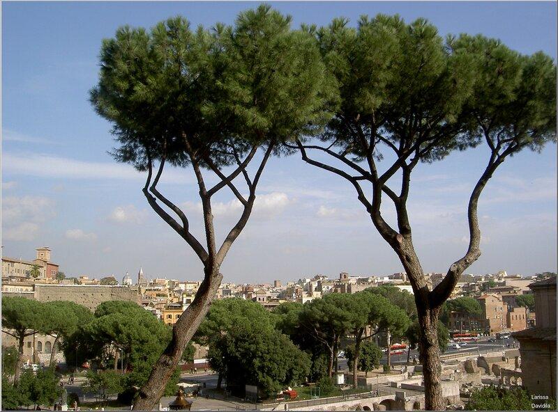 Вид на Рим с Капитолия.