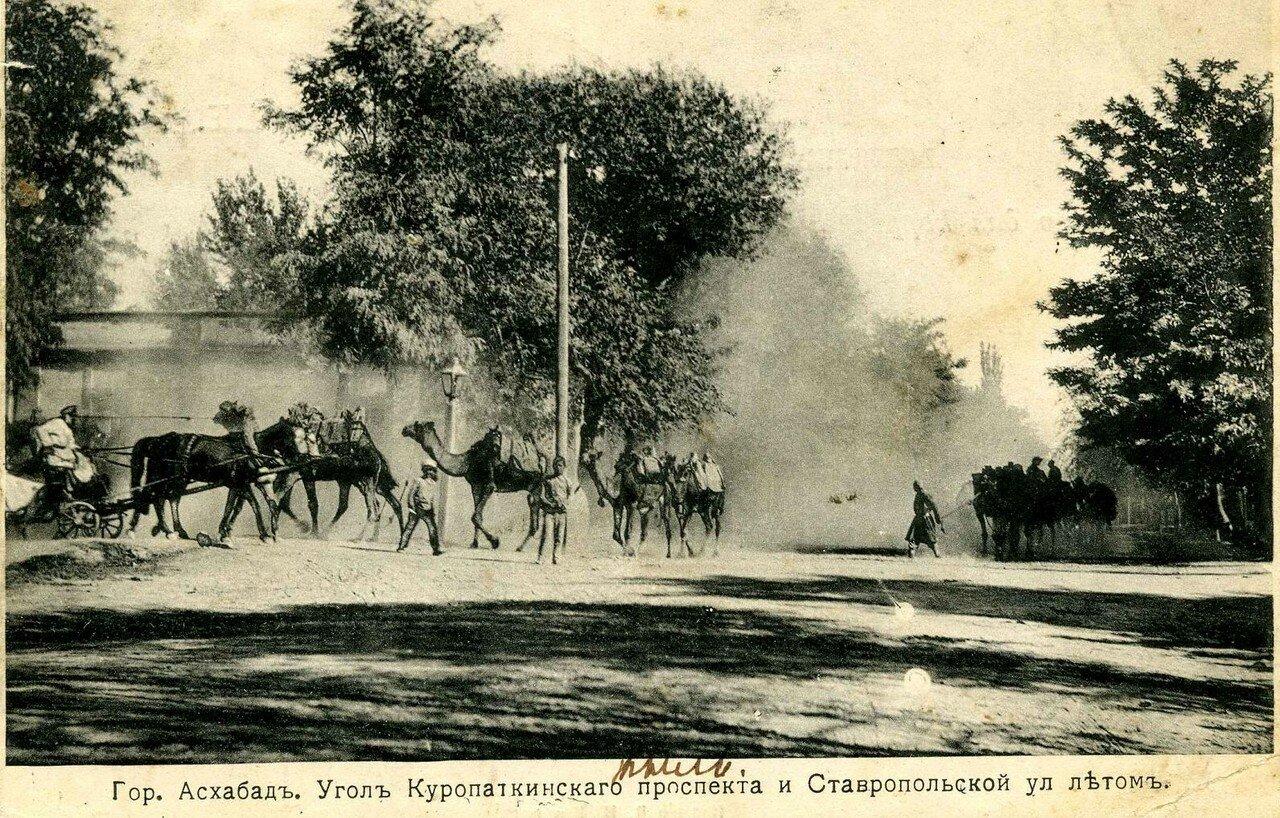 Угол Куропаткинского проспекта и Ставропольской улицы летом