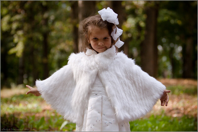 Маленькая подружка невесты