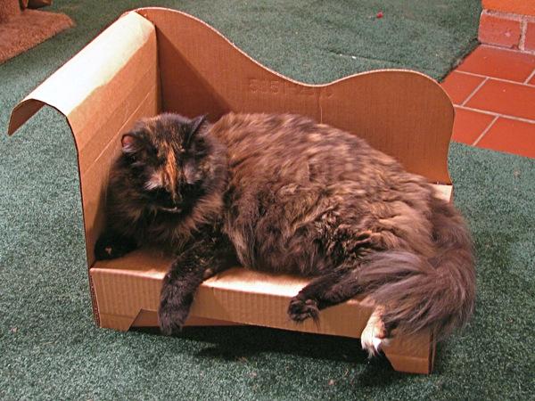 каждый кот желает знать где его кресло:) подойдет и для миниатюрных пород собак. в PDF чертежи, распечатать, вырезать...