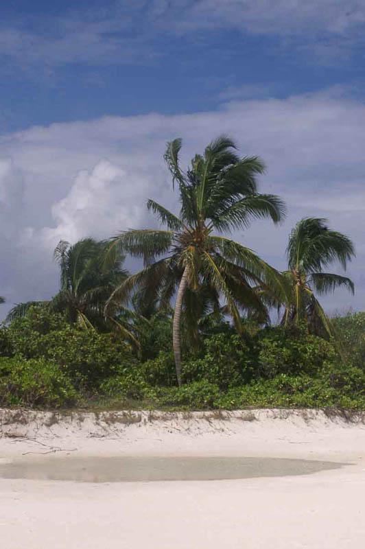 Немифический рай
