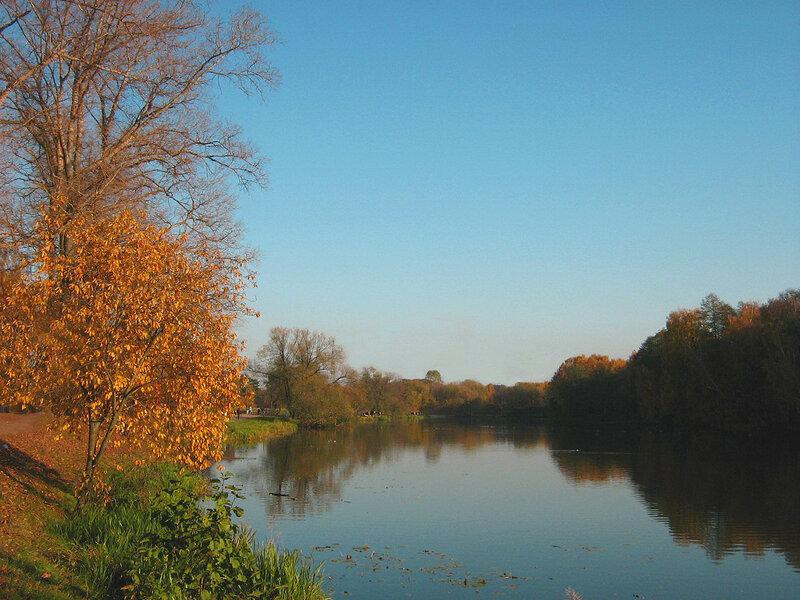 Осень у дальнего пруда