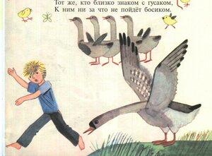 https://img-fotki.yandex.ru/get/38067/19411616.4e0/0_114de4_ea2b3b21_M.jpg