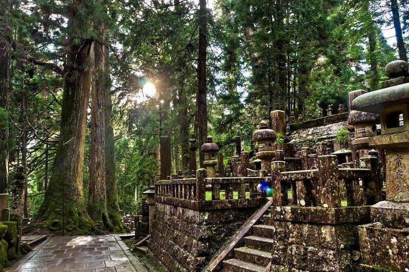 Огромное кладбище монахов в Японии у подножия горы Коя сан