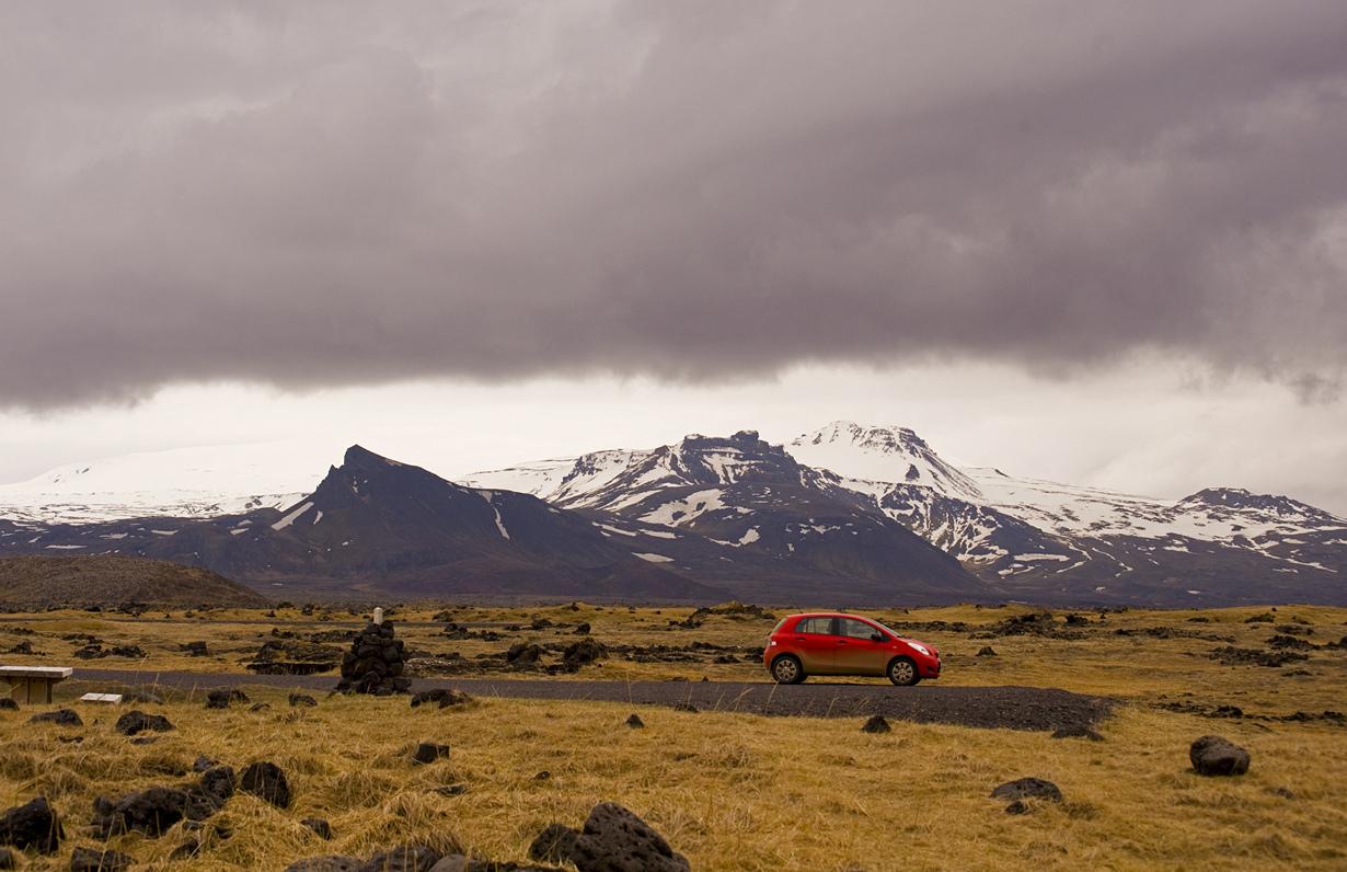 В Исландии практически нет деревьев. Здесь растут лишь немногие виды. Многие из деревьев были вы