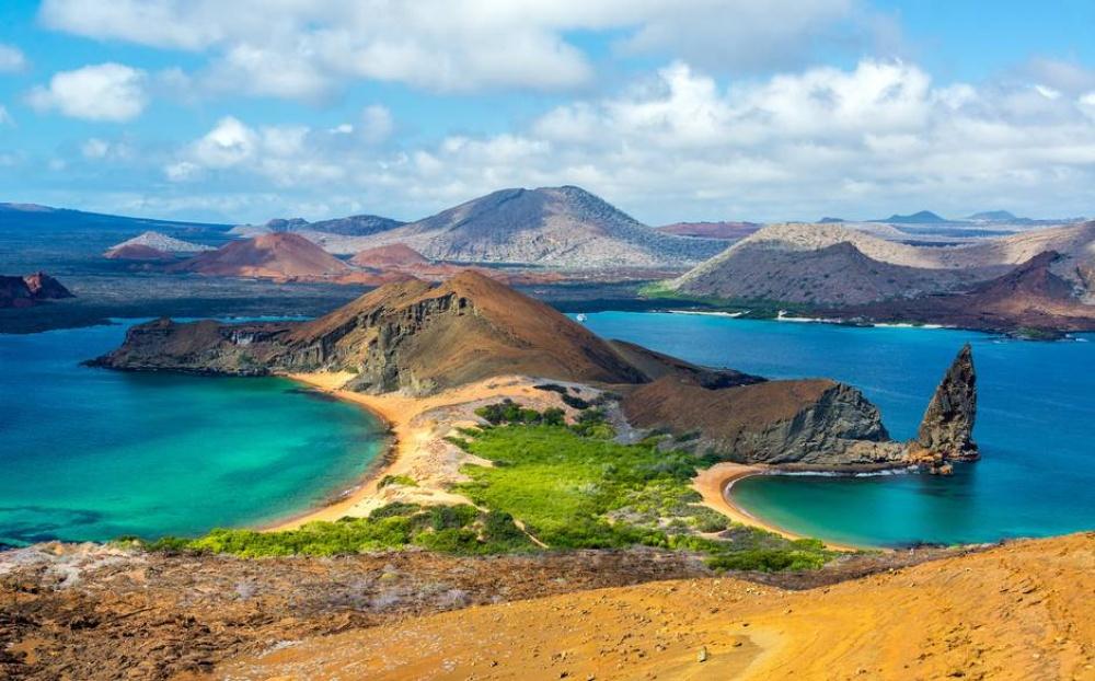 Галапагосы— родной дом почти для 10000 редких видов животных, именно посещение этого архипелага вд