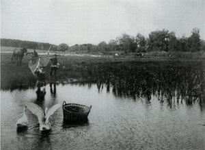 1890-е. Ловля.