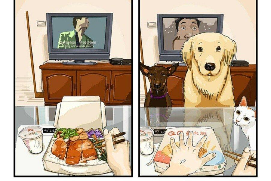 Жизнь до и после прихода собаки в ваш дом