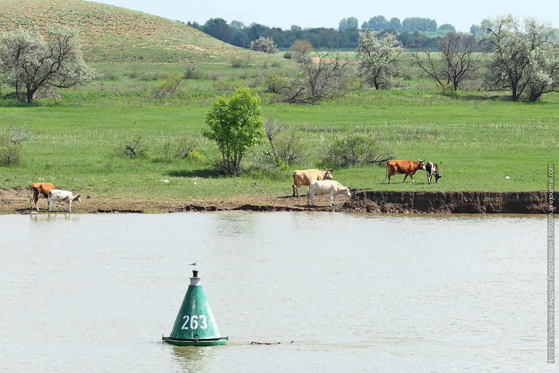 река Бахтемир круиз на теплоходе Русь Великая в Казахстан