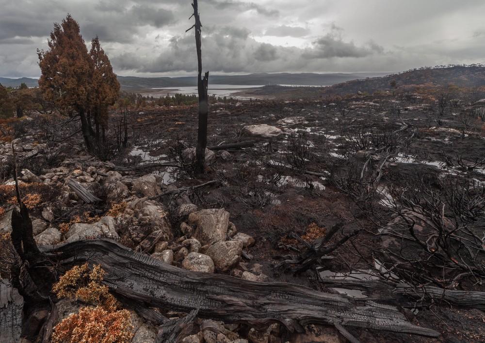 Страшный пожар на острове Тасмания