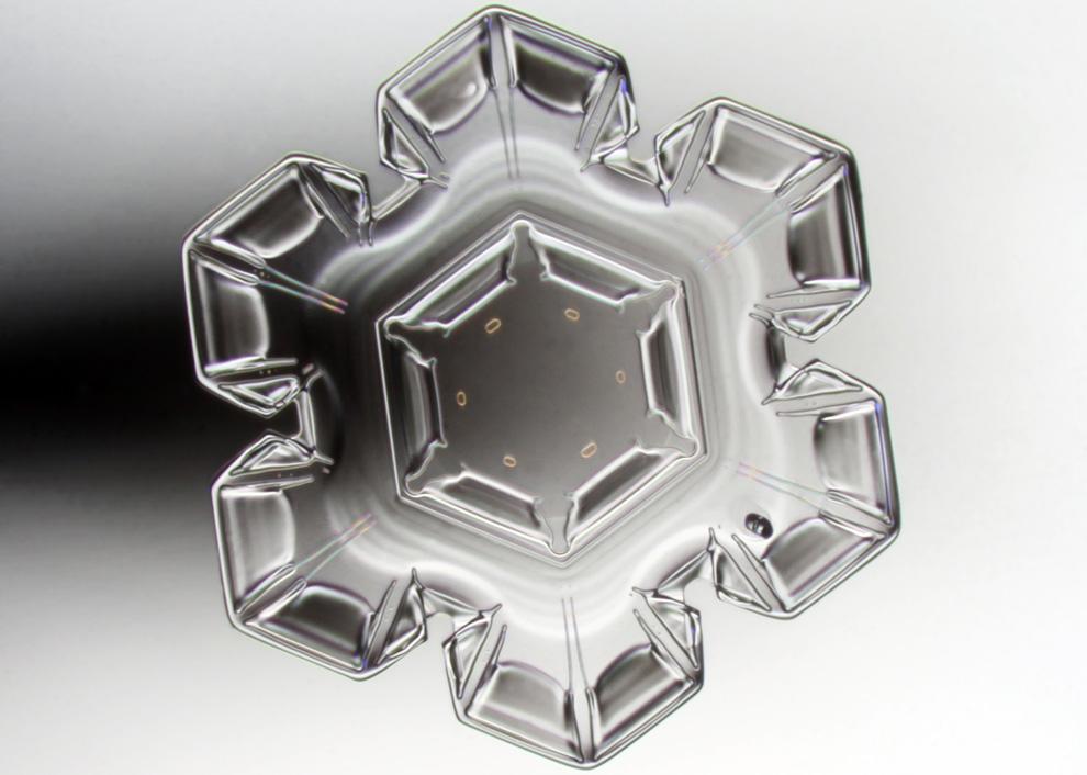 11. Пекка Хонкакоски из Сонкаярви, Финляндия, сделал этот снимок кристалла снежинки , увеличенный в