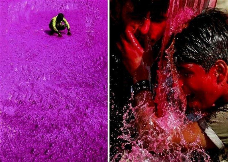 Фестиваль Красок Холи в Индии (Holi, Festival of Colours)