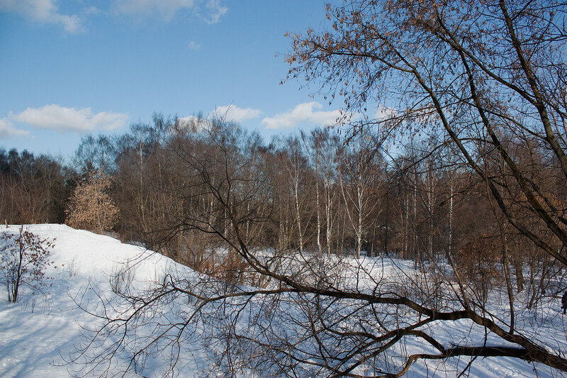 Зимний пейзаж. У входа в парк