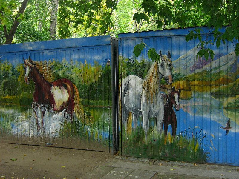 Граффити - лошадки
