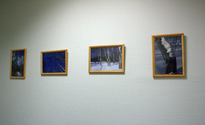 Моя первая персональная выставка